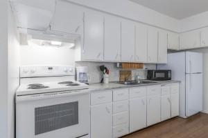 1605-e-8th-ave-kitchen-2